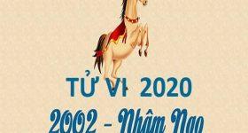 Chi tiết vận hạn Nhâm Ngọ năm 2020 dành cho nam mạng