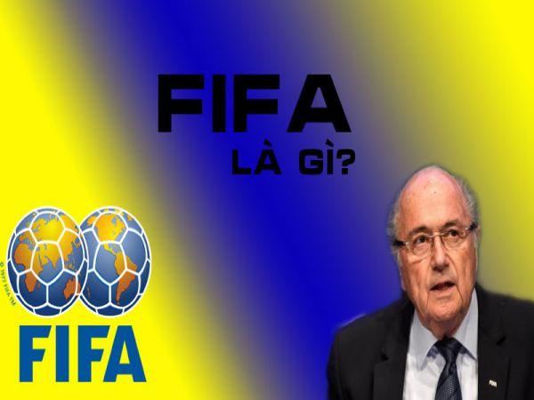 FIFA là gì? Giải đáp những thông tin cơ bản liên quan tới FIFA